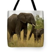 Mom And Little Tote Bag