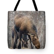 Mom And Young Moose Tote Bag