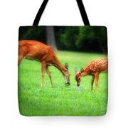 Mom Sharing A Snack With Her Baby Fawn Tote Bag