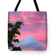 Momentary Magnificence Tote Bag