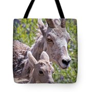 Momma And Baby Ram Tote Bag
