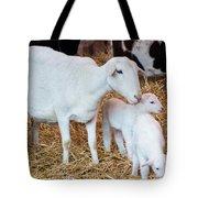 Momma And Newborns Tote Bag