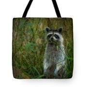 Momma Coon Tote Bag
