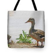 Momma Duck And Baby With A Different View Tote Bag