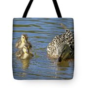 Momma Mallard And Her Ducklings Tote Bag