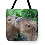 Mommy Kisses Tote Bag