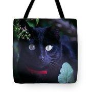 Momo Tote Bag