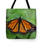 Monarch 3 Tote Bag