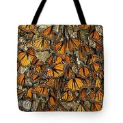 Monarch Butterflies Wintering Tote Bag