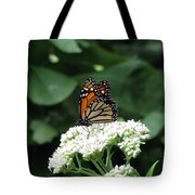 Monarch Butterfly 45 Tote Bag