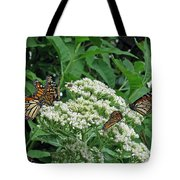 Monarch Butterfly 47 Tote Bag