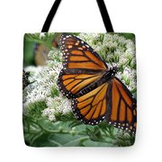 Monarch Butterfly 52 Tote Bag