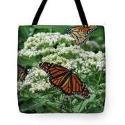 Monarch Butterfly 54 Tote Bag