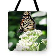 Monarch Butterfly 58 Tote Bag