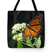 Monarch Butterfly 59 Tote Bag