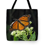 Monarch Butterfly 60 Tote Bag
