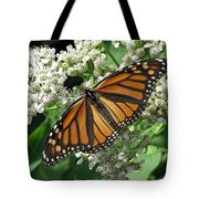 Monarch Butterfly 62 Tote Bag