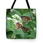Monarch Butterfly 65 Tote Bag