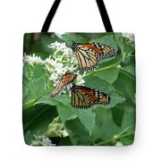 Monarch Butterfly 66 Tote Bag