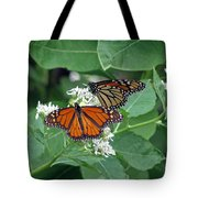 Monarch Butterfly 69 Tote Bag