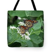 Monarch Butterfly 70 Tote Bag