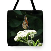 Monarch Butterfly 71 Tote Bag