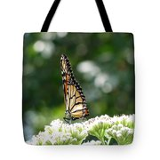 Monarch Butterfly 72 Tote Bag