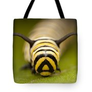 Monarch Butterfly Caterpillar I Tote Bag