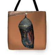 Monarch Butterfly Chrysalis II Tote Bag
