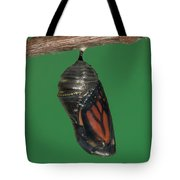 Monarch Butterfly Chrysalis Iv Tote Bag