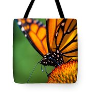 Monarch Butterfly Headshot Tote Bag