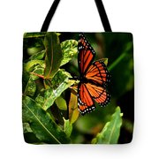 Viceroy Butterfly II Tote Bag