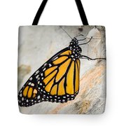 Monarch Butterfly Just Emerged From Her Chrysalis Tote Bag