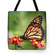 Monarch Butterfly On Lantana Flowers Tote Bag