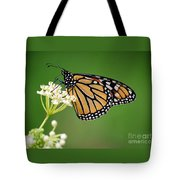 Monarch Butterfly On White Milkweed Flower Tote Bag