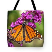 Monarch Hangs On To Buddleia Tote Bag