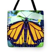 Monarch I Tote Bag