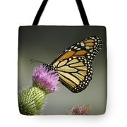 Monarch Of The Wild Tote Bag