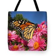 Monarch On Pink Asters Tote Bag