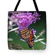 Monarch On Butterfly Bush Tote Bag