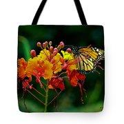 Monarch On Pride Of Barbados Tote Bag