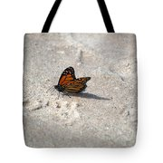 Monarch On The Beach Tote Bag