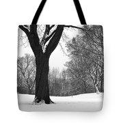 Monarch Park - 324 Tote Bag