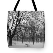 Monarch Park Ground Fog Tote Bag