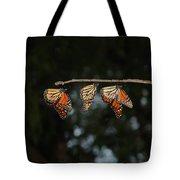 Monarch Trio Tote Bag