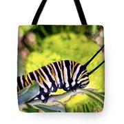 Monarch's Caterpillar.nz Tote Bag