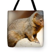 Mongoose Tote Bag
