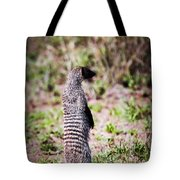 Mongoose Standing. Safari In Serengeti Tote Bag