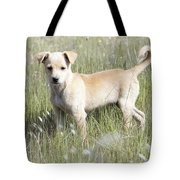 Mongrel Dog Puppy Tote Bag