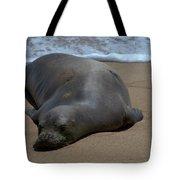 Monk Seal Sunning Tote Bag by Brian Harig